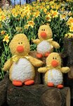 King Cole 9020 Knitting Pattern Cuddles Chunky Ducks in King Cole Cuddles Chunky