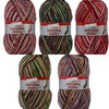 Schoeller + Stahl Fortissima Mexiko 6 Ply Sock Yarn